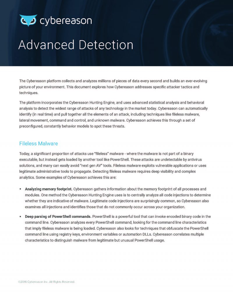 Cybereason Advanced Detection