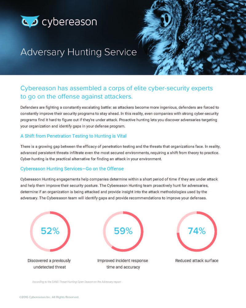 Adversary Hunting Service