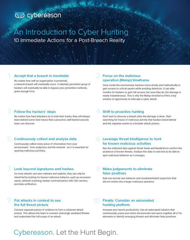 An Introduction to Cyber Hunting