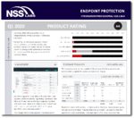 NSS-Report-Cover-DS
