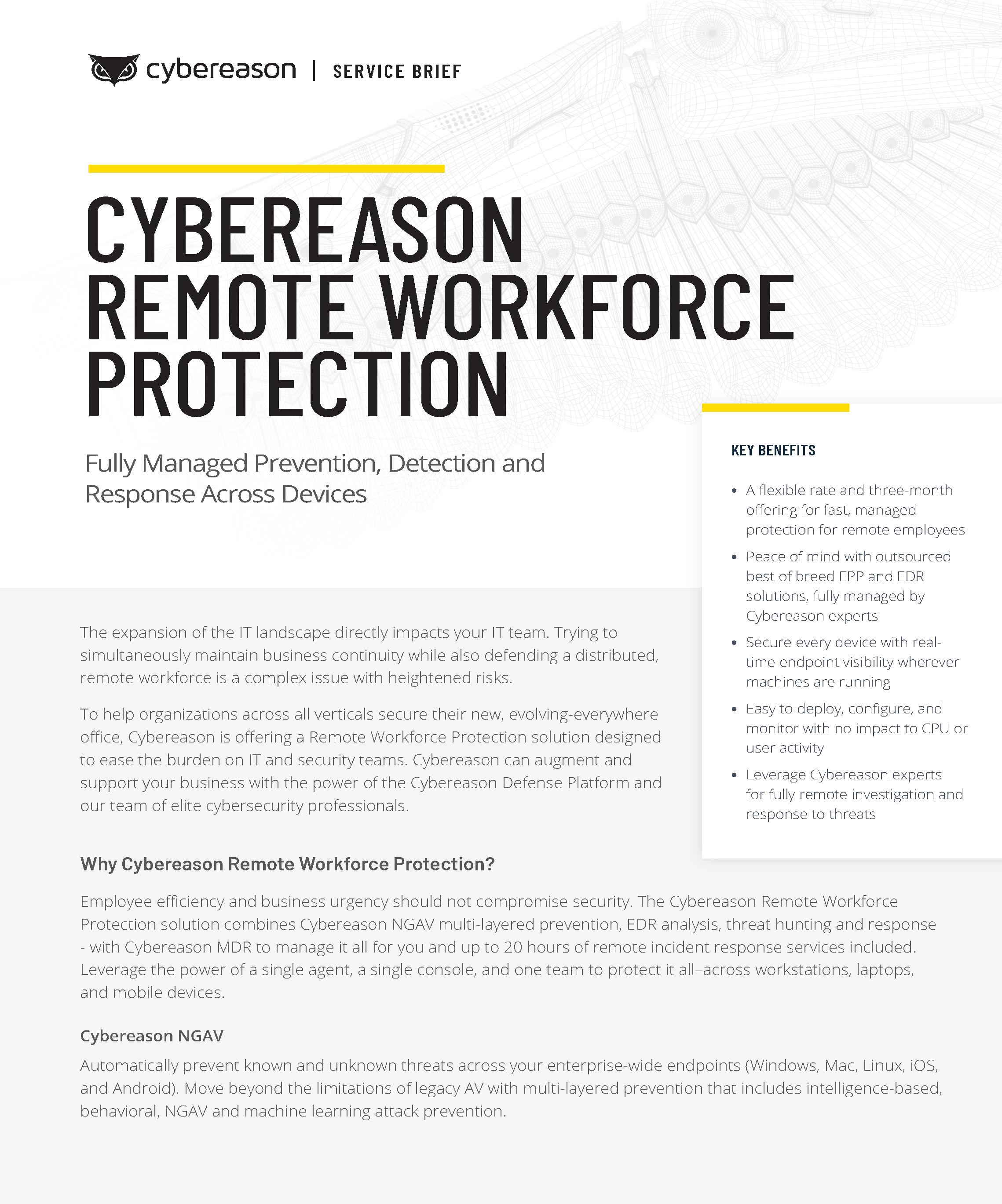 Remote Workforce Protection Datasheet