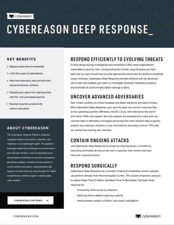 Deep Response Datasheet